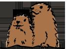 Les Marmottes du BVA